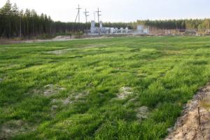 Применение биоматов в Тюменской области